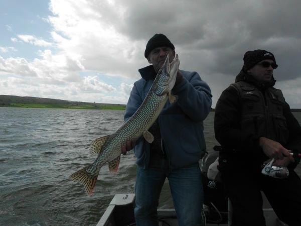 brochet black bass extremaduraprofishing.com (37)