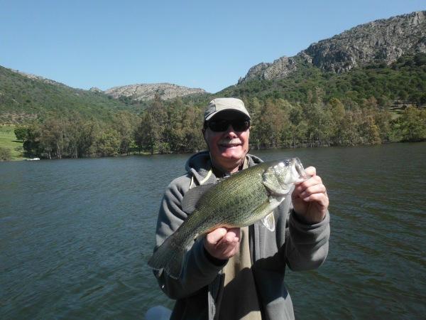 la taille moyenne des jolis poissons autour des 40 cm.