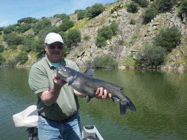 La surprise de la semaine en recherchant le black, un joli catfish de 4 kg