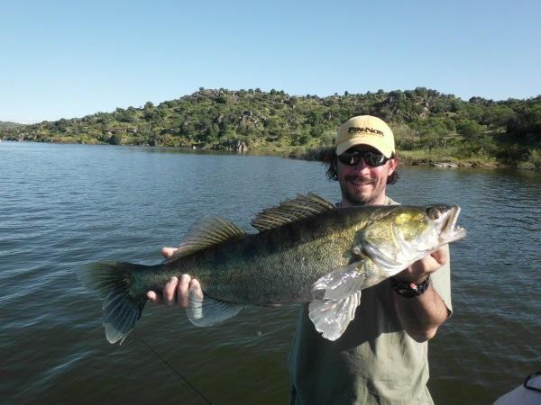 Joli poisson de près de 80 cm pris en verticale pour Jean Marc.