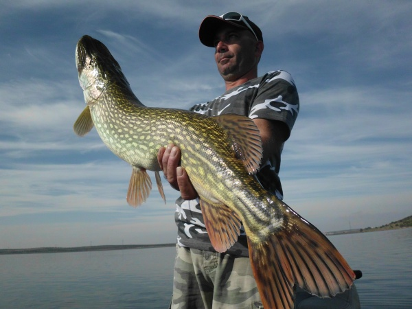 séjour pêche brochet,black bass espagne (78)