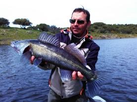 .www.extremaduraprofishing.com.pêche du brochet en espagne.pike fishing in spainjpg (28)